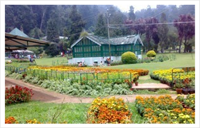 Yercaud Botanical Garden