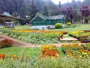 Yercaud Tourist Attractions