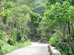 Tourist Places in Yercaud