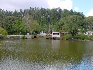 Places to Visit in Yercaud